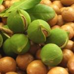 Benefits of eating organic